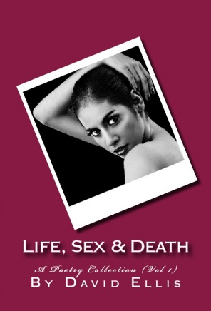 LifeSexDeathCoverBlog