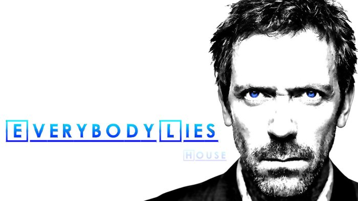 House TV series with Hugh Laurie