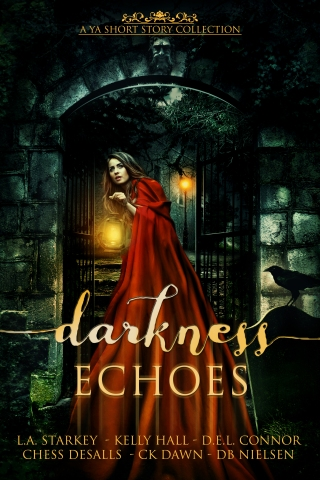 darkness-echoes-e-book-cover