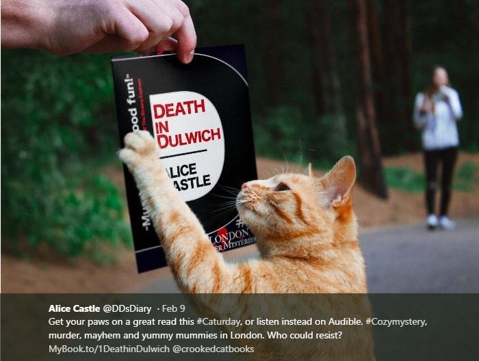 Death In Dulwich Cat
