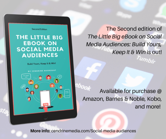 The-Little-Big-ebook-on-social-media-audiences-promo